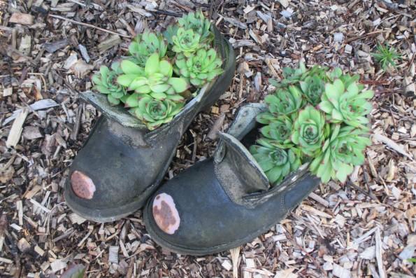 alte Schuhe 001